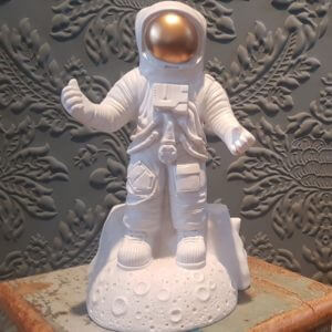 Astronaut Loco Lama