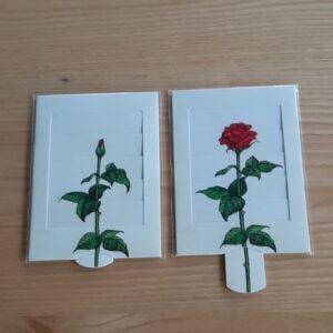 schuifkaart roos