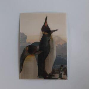 3d pinguin empire state