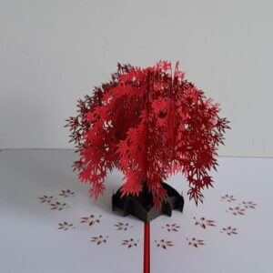 pop-up sakura
