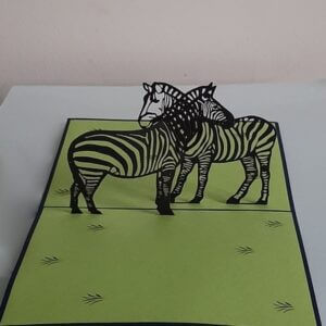 pop-up zebra's